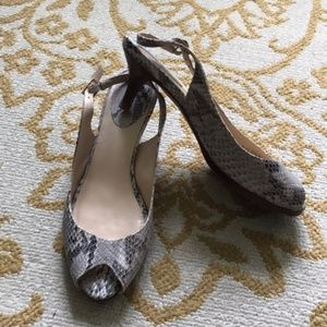 Snake Skin Cole Haan Shoes